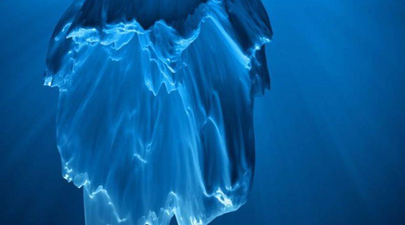 сруб подводные камни